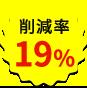 19 percent