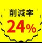24 percent
