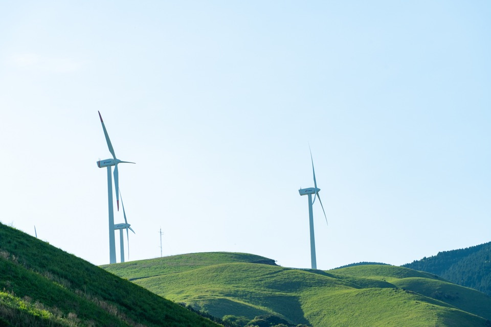 グリーン電力証書とは?活用方法について紹介